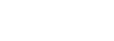 Academy for Professional Excellence Logo